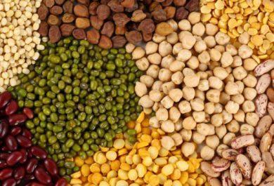 La importancia de las legumbres